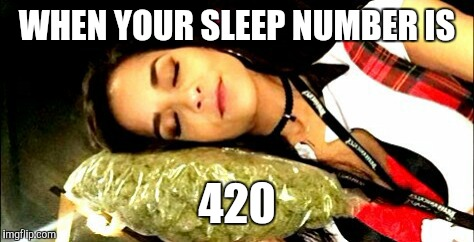 WHEN YOUR SLEEP NUMBER IS 420 | image tagged in what's your sleep number | made w/ Imgflip meme maker