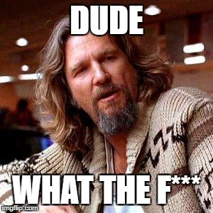 The Dude | DUDE WHAT THE F*** | image tagged in the dude | made w/ Imgflip meme maker
