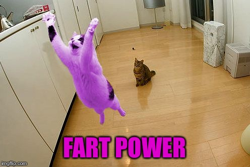RayCat save the world | FART POWER | image tagged in raycat save the world | made w/ Imgflip meme maker