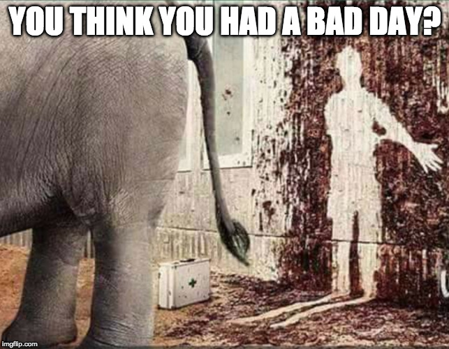 Could be worse. | YOU THINK YOU HAD A BAD DAY? | image tagged in elephant,hillary clinton,poop,bad day | made w/ Imgflip meme maker