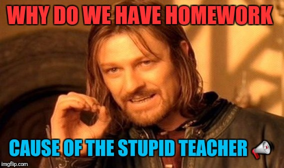 One Does Not Simply Meme | WHY DO WE HAVE HOMEWORK CAUSE OF THE STUPID TEACHER  | image tagged in memes,one does not simply | made w/ Imgflip meme maker