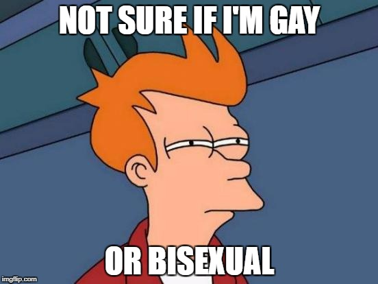 Futurama Fry Meme | NOT SURE IF I'M GAY OR BISEXUAL | image tagged in memes,futurama fry | made w/ Imgflip meme maker