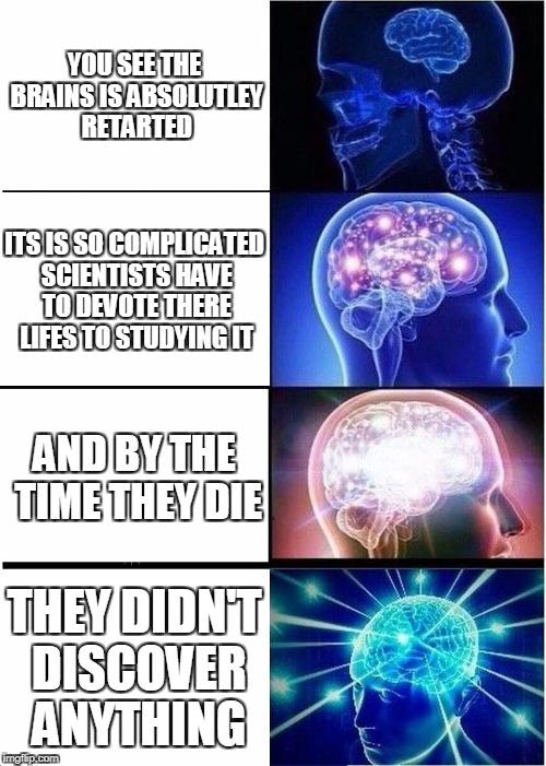 The Anatomy Of The Brain Imgflip