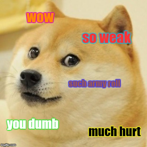 Doge Meme | wow so weak such army roll you dumb much hurt | image tagged in memes,doge | made w/ Imgflip meme maker