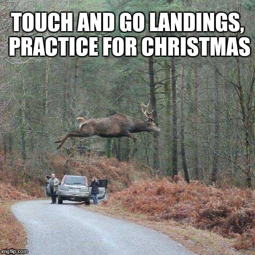 TOUCH AND GO LANDINGS, PRACTICE FOR CHRISTMAS | image tagged in reindeer | made w/ Imgflip meme maker