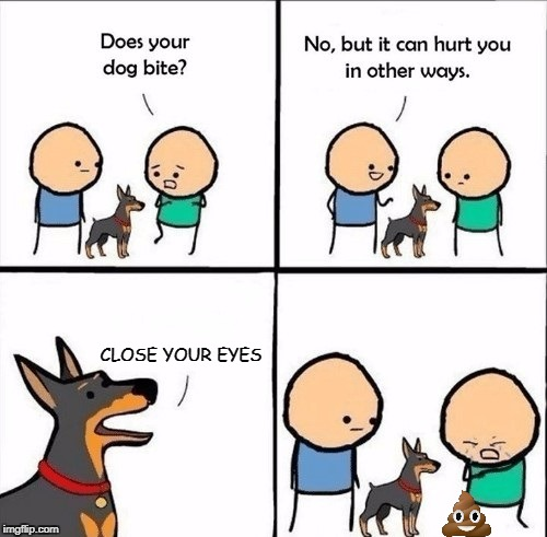 Does Your Dog Bite? | CLOSE YOUR EYES | image tagged in does your dog bite,poop,dog,dog poop | made w/ Imgflip meme maker