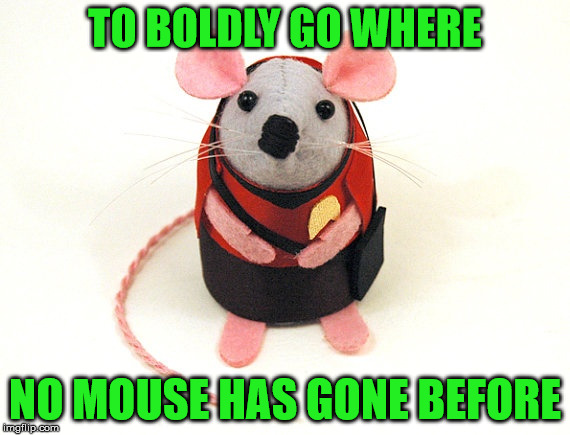 TO BOLDLY GO WHERE NO MOUSE HAS GONE BEFORE | made w/ Imgflip meme maker