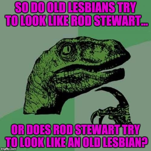 Philosoraptor Meme | SO DO OLD LESBIANS TRY TO LOOK LIKE ROD STEWART... OR DOES ROD STEWART TRY TO LOOK LIKE AN OLD LESBIAN? | image tagged in memes,philosoraptor | made w/ Imgflip meme maker