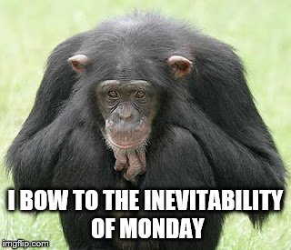Monday Always Comes | I BOW TO THE INEVITABILITY OF MONDAY | image tagged in monday,sad monkey | made w/ Imgflip meme maker