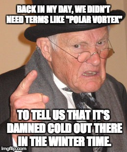"Back In My Day Meme | BACK IN MY DAY, WE DIDN'T NEED TERMS LIKE ""POLAR VORTEX"" TO TELL US THAT IT'S DAMNED COLD OUT THERE IN THE WINTER TIME. 