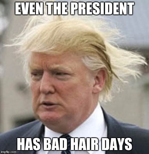 Donald Trump 1 | EVEN THE PRESIDENT HAS BAD HAIR DAYS | image tagged in donald trump 1 | made w/ Imgflip meme maker