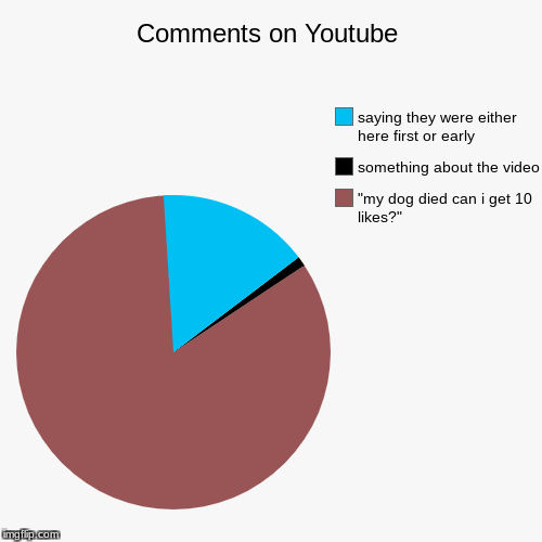 "Comments on Youtube | ""my dog died can i get 10 likes?"", something about the video, saying they were either here first or early 