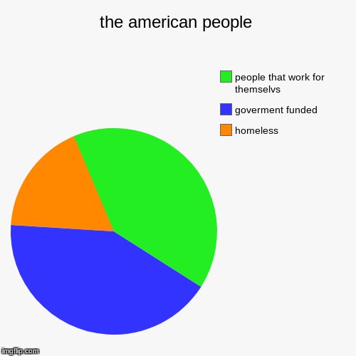 the american people | homeless, goverment funded, people that work for themselvs | image tagged in funny,pie charts | made w/ Imgflip chart maker