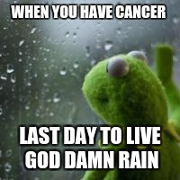 WHEN YOU HAVE CANCER LAST DAY TO LIVE GO***AMN RAIN | image tagged in sad kermie | made w/ Imgflip meme maker