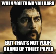 Madness not Sparta | WHEN YOU THINK YOU HARD BUT THAT'S NOT YOUR BRAND OF TOILET PAPER | image tagged in madness not sparta | made w/ Imgflip meme maker