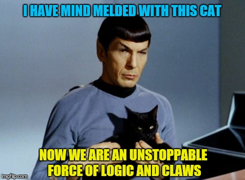A star trek anonymous week by ? and people | I HAVE MIND MELDED WITH THIS CAT NOW WE ARE AN UNSTOPPABLE FORCE OF LOGIC AND CLAWS | image tagged in memes,star trek week,anonymous meme week,spock,cats | made w/ Imgflip meme maker