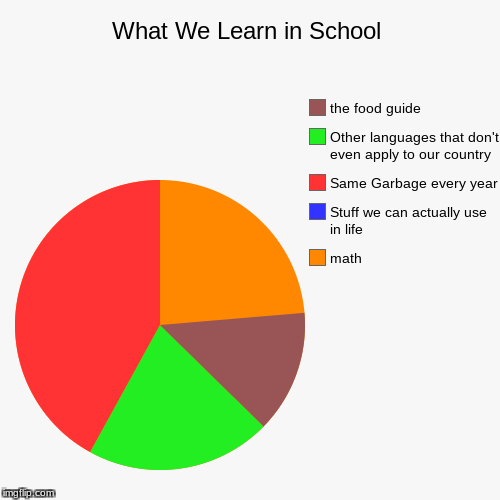 What We Learn in School | math, Stuff we can actually use in life, Same Garbage every year, Other languages that don't even apply to our cou | image tagged in funny,pie charts | made w/ Imgflip pie chart maker