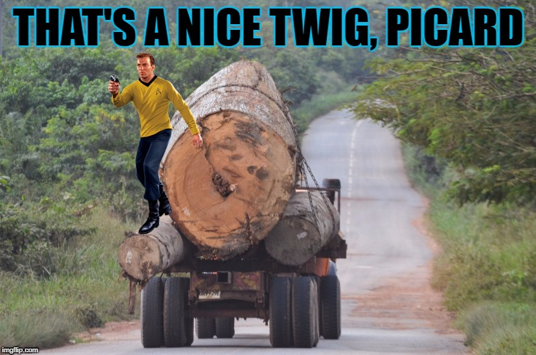 THAT'S A NICE TWIG, PICARD | made w/ Imgflip meme maker