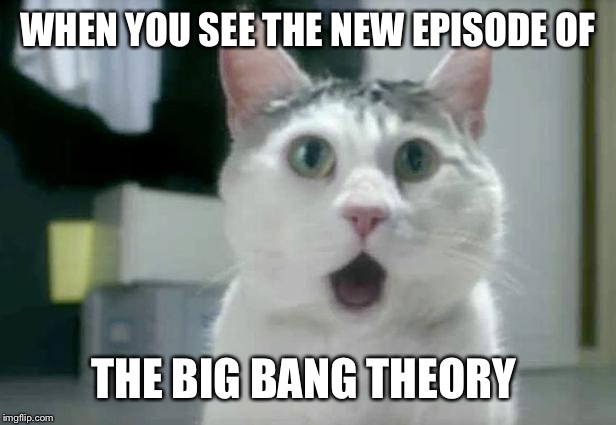 OMG Cat Meme | WHEN YOU SEE THE NEW EPISODE OF THE BIG BANG THEORY | image tagged in memes,omg cat | made w/ Imgflip meme maker