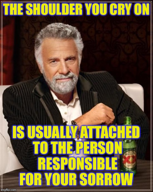 The Most Interesting Man In The World Meme | THE SHOULDER YOU CRY ON IS USUALLY ATTACHED TO THE PERSON RESPONSIBLE FOR YOUR SORROW | image tagged in memes,the most interesting man in the world,anonymous meme week | made w/ Imgflip meme maker