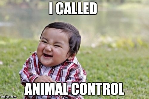 Evil Toddler Meme | I CALLED ANIMAL CONTROL | image tagged in memes,evil toddler | made w/ Imgflip meme maker