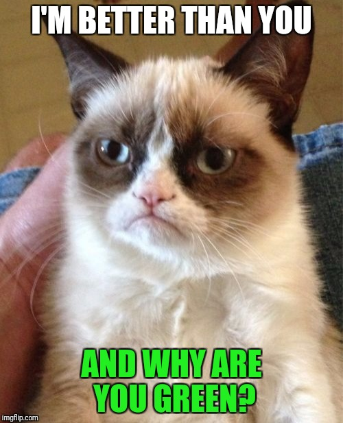 Grumpy Cat Meme | I'M BETTER THAN YOU AND WHY ARE YOU GREEN? | image tagged in memes,grumpy cat | made w/ Imgflip meme maker