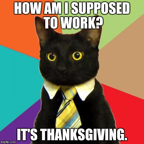 Business Cat Meme | HOW AM I SUPPOSED TO WORK? IT'S THANKSGIVING. | image tagged in memes,business cat | made w/ Imgflip meme maker