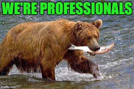 WE'RE PROFESSIONALS | made w/ Imgflip meme maker