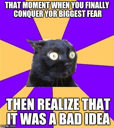 anxiety cat | THAT MOMENT WHEN YOU FINALLY CONQUER YOR BIGGEST FEAR THEN REALIZE THAT IT WAS A BAD IDEA | image tagged in anxiety cat | made w/ Imgflip meme maker