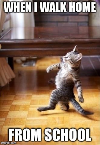 Cool Cat Stroll Meme | WHEN I WALK HOME FROM SCHOOL | image tagged in memes,cool cat stroll | made w/ Imgflip meme maker