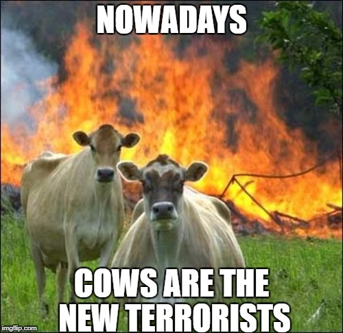 Evil Cows Meme | NOWADAYS COWS ARE THE NEW TERRORISTS | image tagged in memes,evil cows | made w/ Imgflip meme maker
