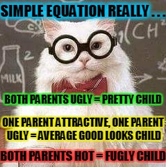 SIMPLE EQUATION REALLY . . . BOTH PARENTS UGLY = PRETTY CHILD ONE PARENT ATTRACTIVE, ONE PARENT UGLY = AVERAGE GOOD LOOKS CHILD BOTH PARENTS | made w/ Imgflip meme maker