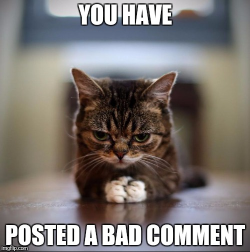 Evil Lil Bub | YOU HAVE POSTED A BAD COMMENT | image tagged in evil lil bub | made w/ Imgflip meme maker