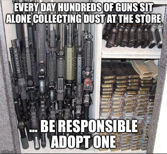 EVERY DAY HUNDREDS OF GUNS SIT ALONE COLLECTING DUST AT THE STORE ... BE RESPONSIBLE ADOPT ONE | image tagged in guns | made w/ Imgflip meme maker