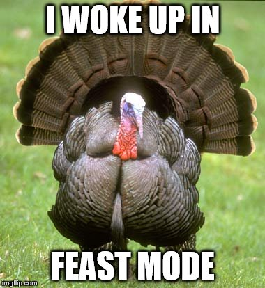 Turkey | I WOKE UP IN FEAST MODE | image tagged in memes,turkey | made w/ Imgflip meme maker