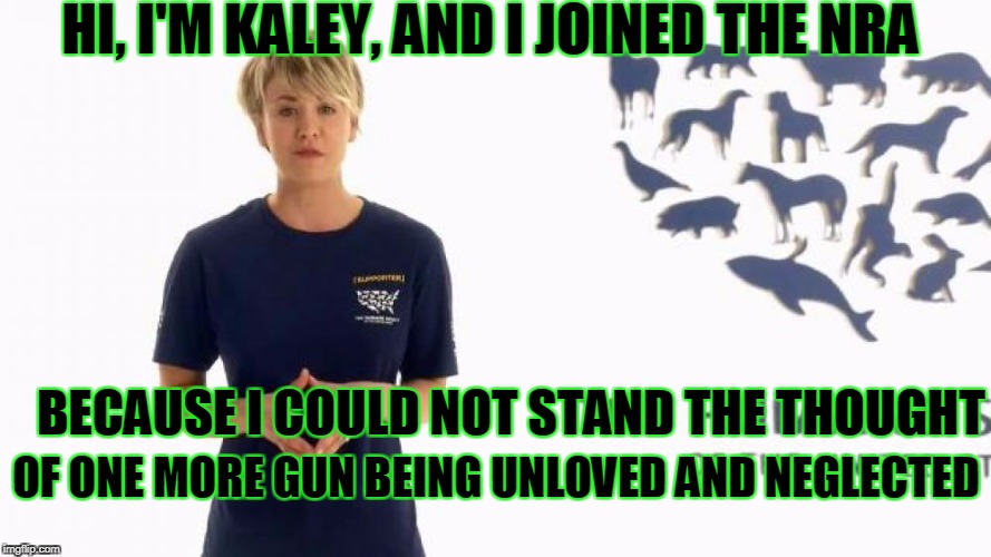 HI, I'M KALEY, AND I JOINED THE NRA BECAUSE I COULD NOT STAND THE THOUGHT OF ONE MORE GUN BEING UNLOVED AND NEGLECTED | made w/ Imgflip meme maker