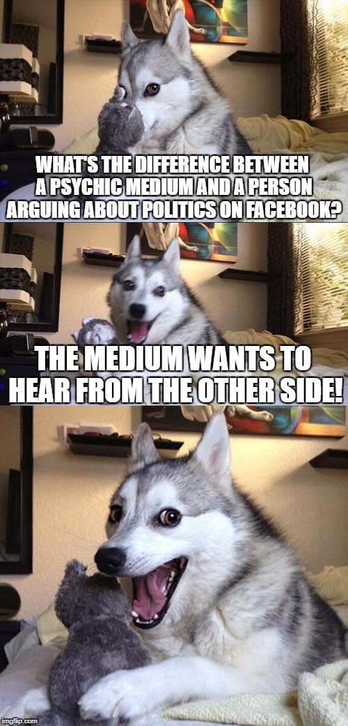 Bad Pun Dog Meme | WHAT'S THE DIFFERENCE BETWEEN A PSYCHIC MEDIUM AND A PERSON ARGUING ABOUT POLITICS ON FACEBOOK? THE MEDIUM WANTS TO HEAR FROM THE OTHER SIDE | image tagged in memes,bad pun dog | made w/ Imgflip meme maker