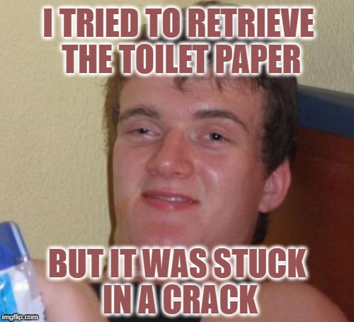 10 Guy Meme | I TRIED TO RETRIEVE THE TOILET PAPER BUT IT WAS STUCK IN A CRACK | image tagged in memes,10 guy | made w/ Imgflip meme maker