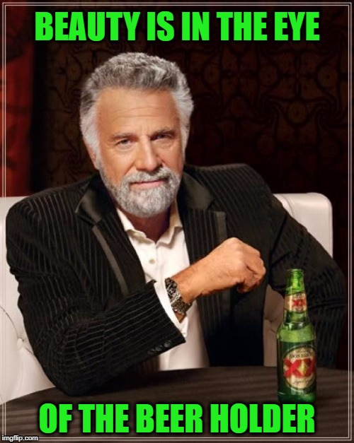 The Most Interesting Man In The World Meme | BEAUTY IS IN THE EYE OF THE BEER HOLDER | image tagged in memes,the most interesting man in the world | made w/ Imgflip meme maker