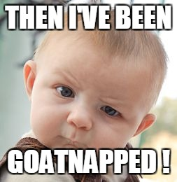 Skeptical Baby Meme | THEN I'VE BEEN GOATNAPPED ! | image tagged in memes,skeptical baby | made w/ Imgflip meme maker
