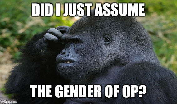 DID I JUST ASSUME THE GENDER OF OP? | made w/ Imgflip meme maker