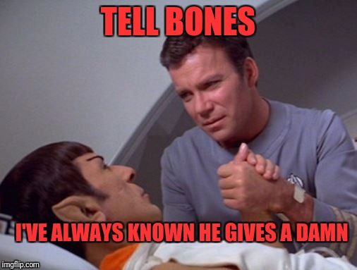Star Trek week, a brandy_jackson, Tombstone 1881, and coollew event, Nov 20-27 | TELL BONES I'VE ALWAYS KNOWN HE GIVES A DAMN | image tagged in star trek,memes,funny,dank memes,spock | made w/ Imgflip meme maker