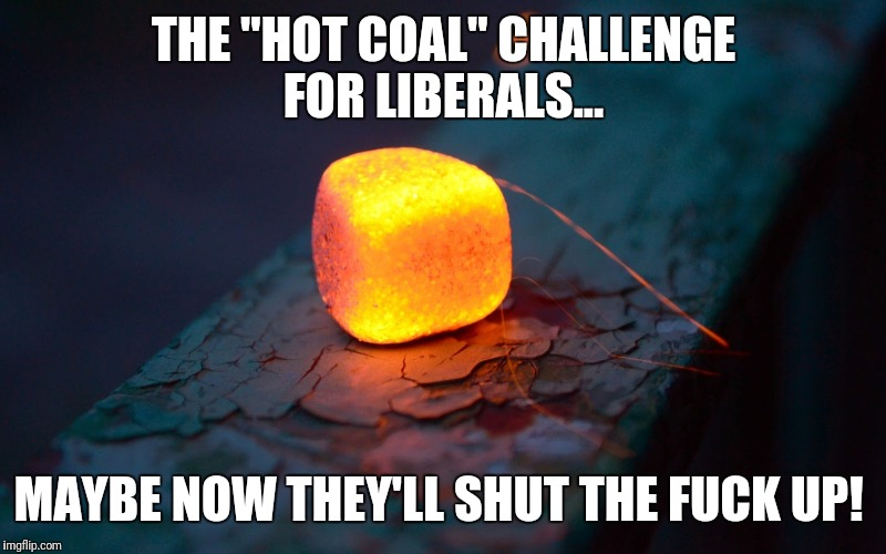 "THE ""HOT COAL"" CHALLENGE FOR LIBERALS... MAYBE NOW THEY'LL SHUT THE F**K UP! 