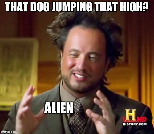 Ancient Aliens Meme | THAT DOG JUMPING THAT HIGH? ALIEN | image tagged in memes,ancient aliens | made w/ Imgflip meme maker