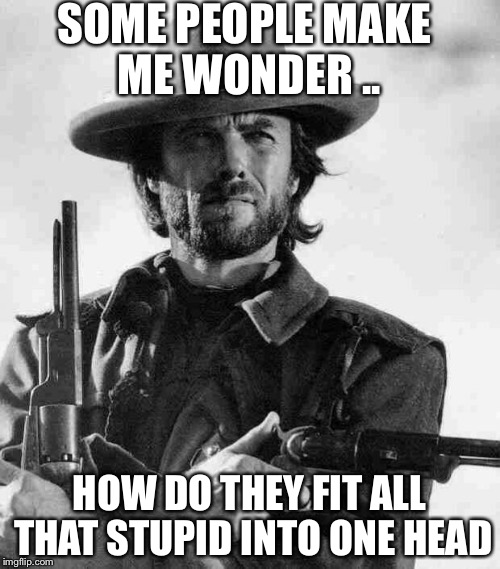 Clint Eastwood | SOME PEOPLE MAKE ME WONDER .. HOW DO THEY FIT ALL THAT STUPID INTO ONE HEAD | image tagged in clint eastwood | made w/ Imgflip meme maker