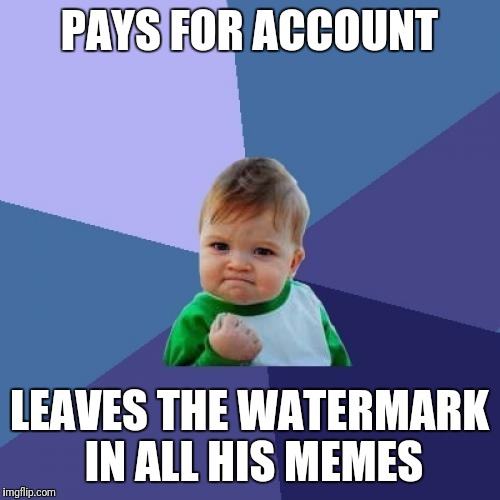 Pro-Memer | PAYS FOR ACCOUNT LEAVES THE WATERMARK IN ALL HIS MEMES | image tagged in memes,success kid,awesome | made w/ Imgflip meme maker