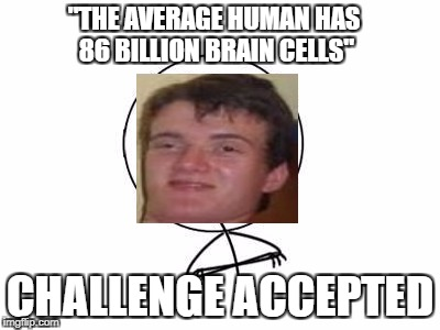 "Challenge Accepted Rage Face Meme | ""THE AVERAGE HUMAN HAS 86 BILLION BRAIN CELLS"" CHALLENGE ACCEPTED 