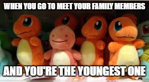 no one likes being left out | WHEN YOU GO TO MEET YOUR FAMILY MEMBERS AND YOU'RE THE YOUNGEST ONE | image tagged in awkward charmander,memes,funny | made w/ Imgflip meme maker