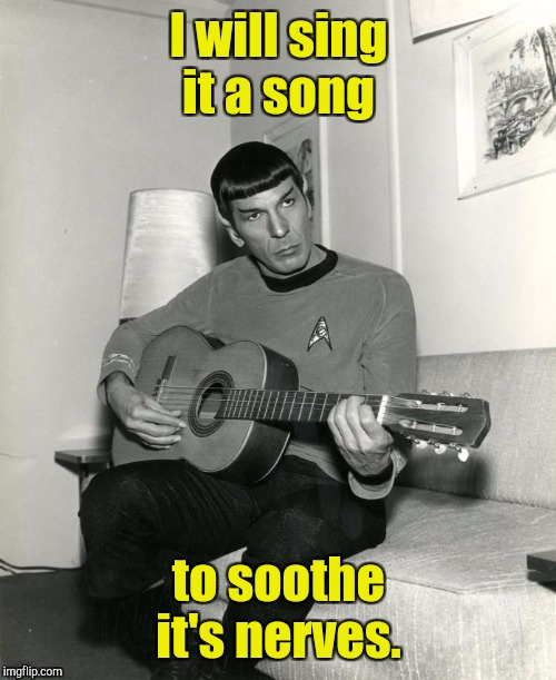 I will sing it a song to soothe it's nerves. | made w/ Imgflip meme maker