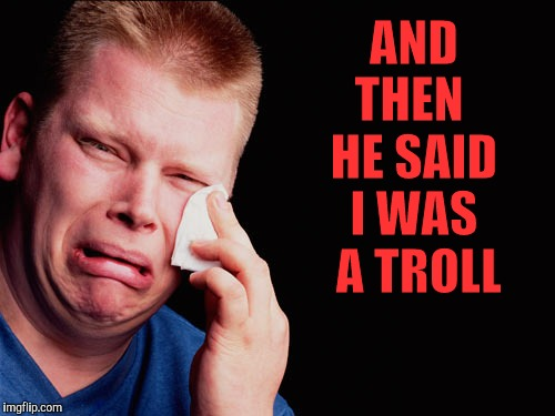 Calling someone a troll is not nice. It will hurt their feelz. | AND THEN  HE SAID I WAS  A TROLL | image tagged in memes,troll,getting called a troll,butthurt,keyboard kapow,my feelz are hurt | made w/ Imgflip meme maker